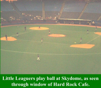 skydomelittleleague