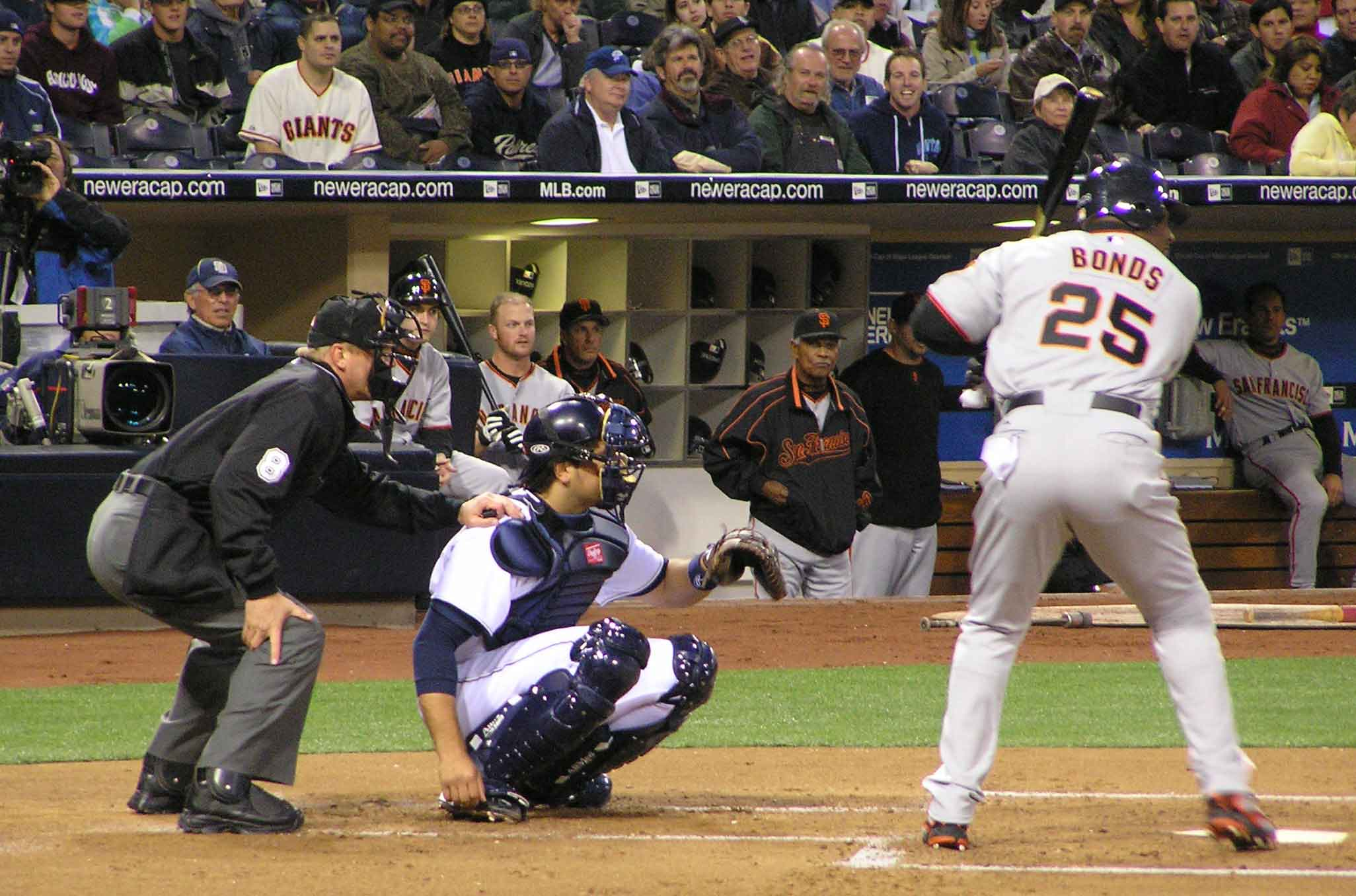 petcobonds